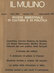 Copertina del fascicolo dell'articolo La tutela delle minoranze in Italia